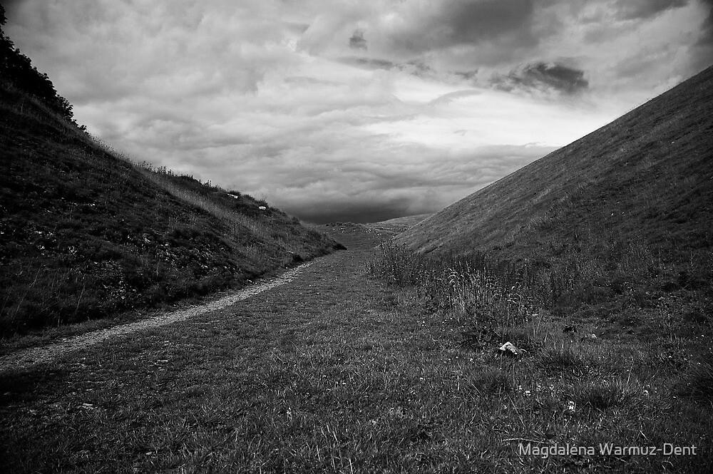 Derbyshire valley by Magdalena Warmuz-Dent