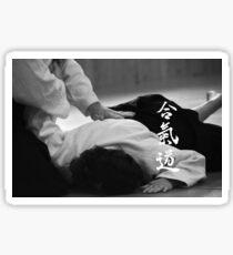 Aikido - immobilisation Sticker