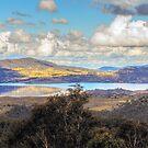 A Golden Hill by Mark  Lucey