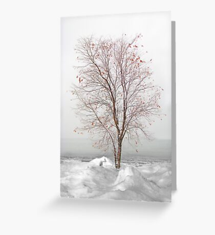 Fire n Ice (refuse to yield) Greeting Card