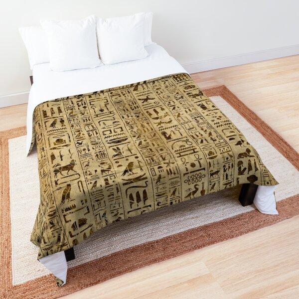 Egyptian hieroglyphs on papyrus Comforter