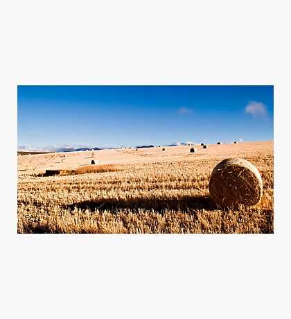 Hay Bale Just After Dawn Photographic Print