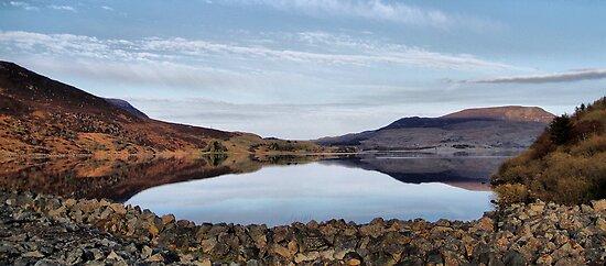 Bala Lake  by Irene  Burdell