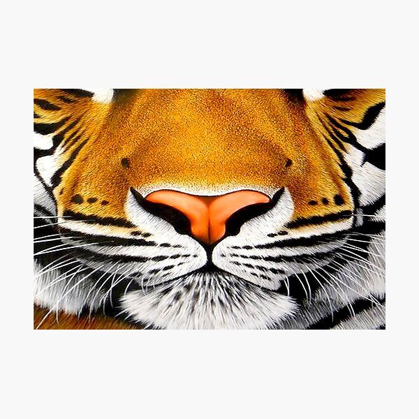 tiger face   3D tiger  Photographic Print