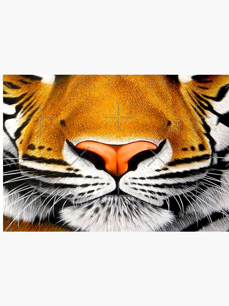 tiger face   3D tiger  by alpachino35