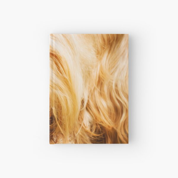 Soft Spinone Nose Hardcover Journal