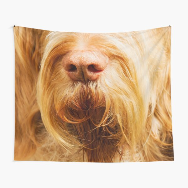 Soft Spinone Nose Tapestry