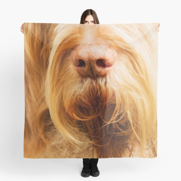 Soft Spinone Nose Scarf