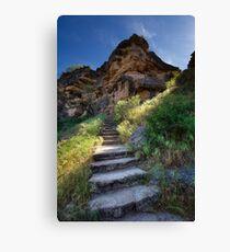 Stone Climb Canvas Print