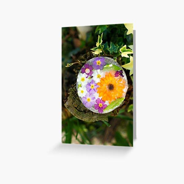Fleurs de Printemps Givrées 6 Carte de vœux