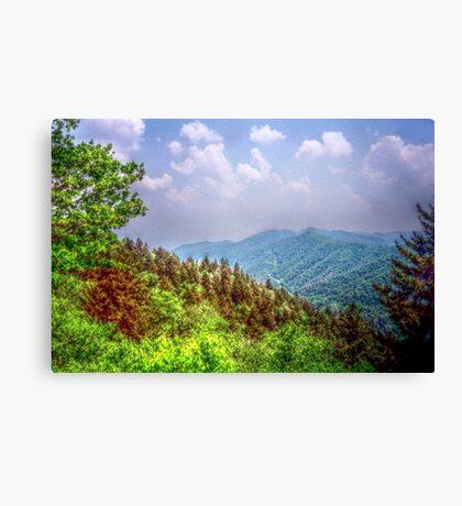 Valley Shot - North Carolina Canvas Print