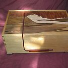 Jewellery Box with Exotic Veneers. by Brian Cox