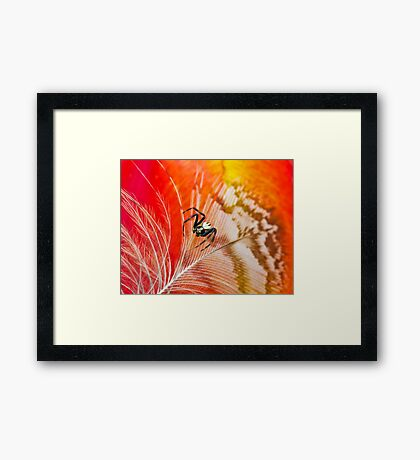 Bridge Unto Light Framed Print