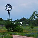 Windmill in the Wildflowers by Cathy Jones