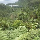 lake tarawera surroundings by Nora Fraser