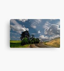 a long and winding road Metal Print