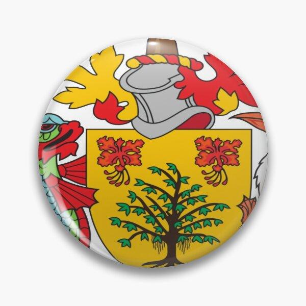 pins pin/'s flag national badge metal lapel hat button vest usa florida