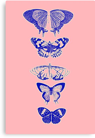 Butterflies Pink by Melissa Blowers