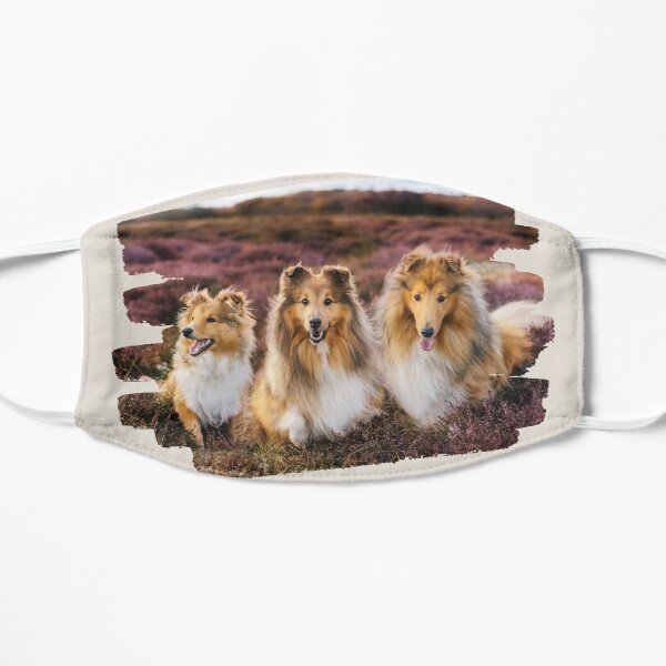 Shelties in the Heather Mask