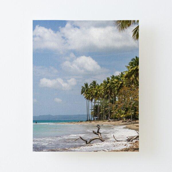 Dominikanische Republik, Blick aufs Meer Aufgezogener Druck auf Leinwandkarton