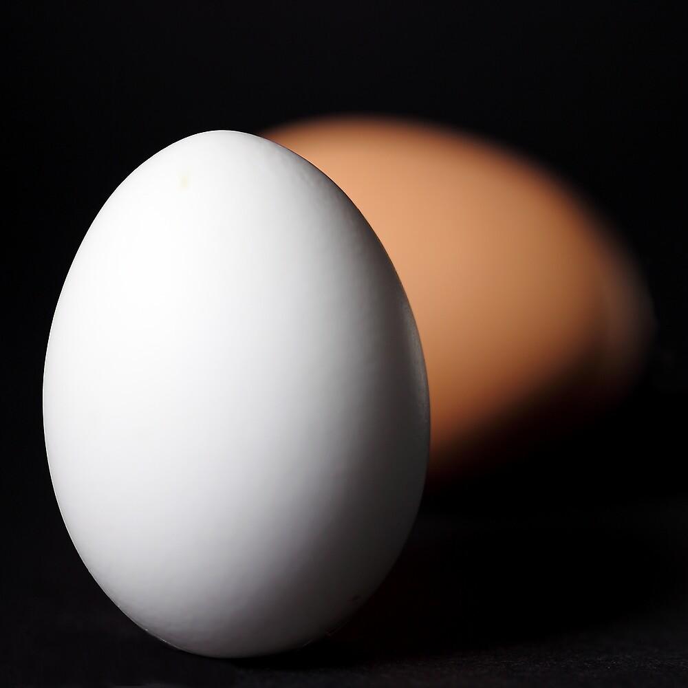 Eggs by PhotoTamara