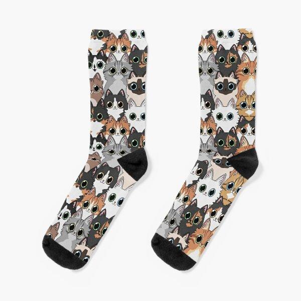 Lots of cats! Socks