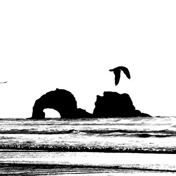 Rockaway beach Oregon by hannah109
