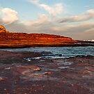 The Bird - Red Bluff Beach - Kalbarri by John Pitman