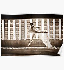 Ballet Dancer In the Light Poster
