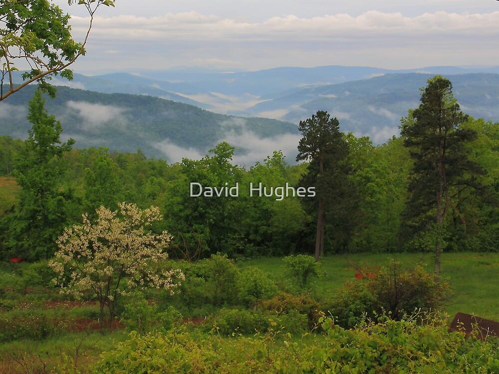Ozark Mountain Views by David  Hughes