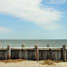 Morris Island by PhotoGirlSC