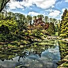 Brookside Gardens by Robin Black