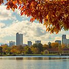 Denver Skyline Fall Foliage View by Bo Insogna