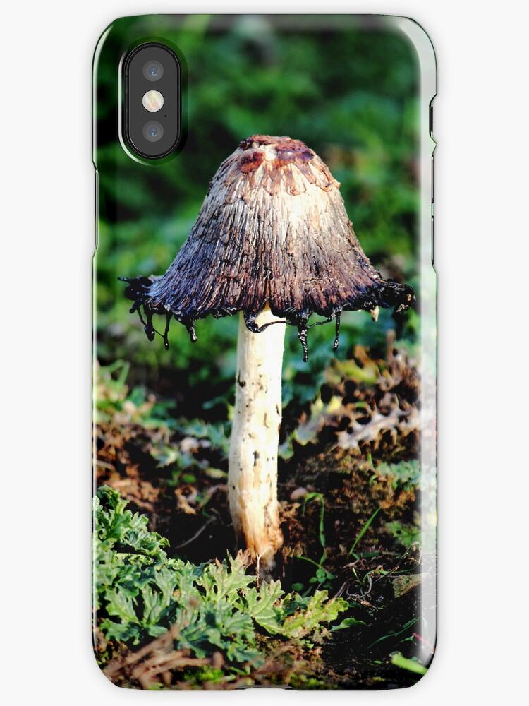 Ink Cap Wild Mushroom by John Dunbar
