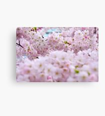 Cluster of Pink Canvas Print