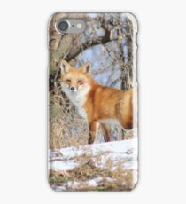 Lookout iPhone Case/Skin