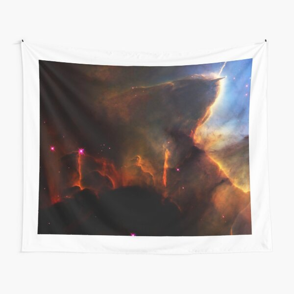 NASA - History of Hubble Space Telescope Tapestry