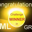 LUML Winner banner by bubblehex08