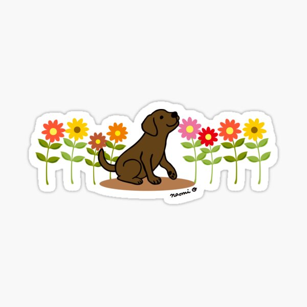 Chocolate Labrador Puppy and Flowers Sticker