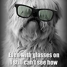 Dog with Glasses by fantasytripp