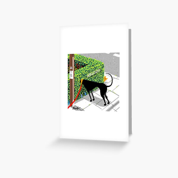 Checking for Cats Greeting Card