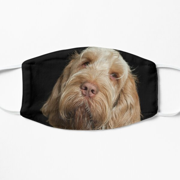 Head tilt Spinone Mask