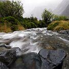 Monkey Creek, Fiordland by Michael Treloar