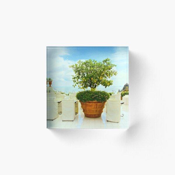Lemon Tree, Positano, Italy Acrylic Block