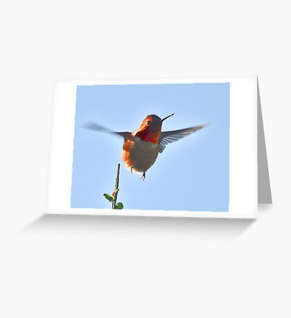 On the Wing Greeting Card