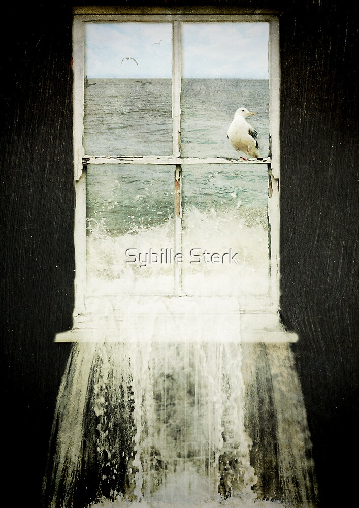 House by the Sea by Sybille Sterk