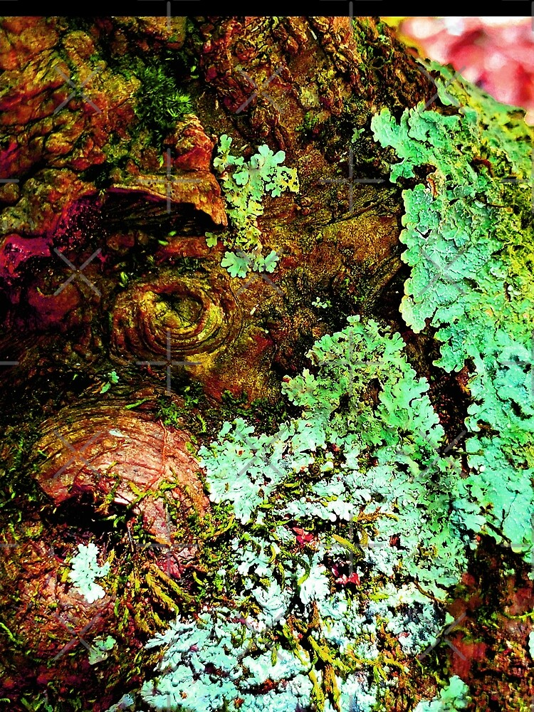 I lichen you 2! Classy Camo by dreamie09