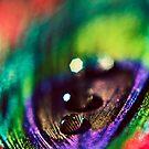 Rainbow Drop by EkaterinaLa