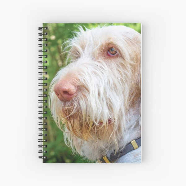 Thinking thoughts Spinone Spiral Notebook