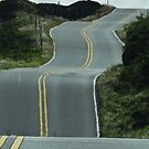 Road to Hana, Maui, Hawaii by MaureenS